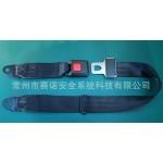 安全带厂家供应电动车用两点式安全带